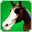 Steed of Bright Days(skill)-icon.png
