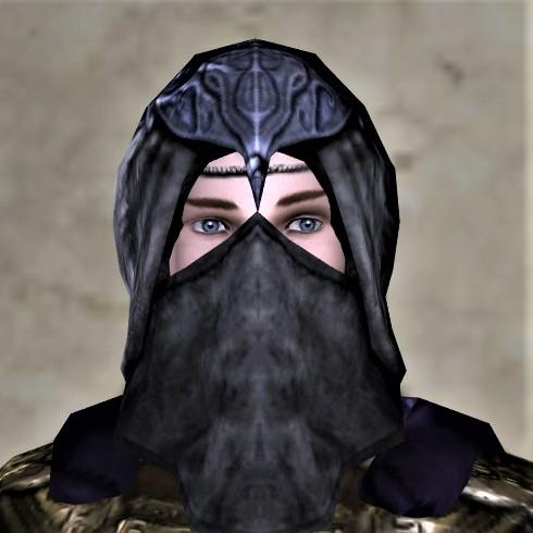 Raven Festival Mask