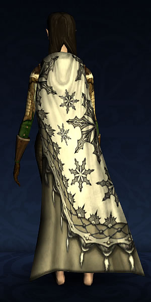 Fancy Winter Cloak.jpg