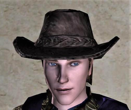 Adventurer's Hat