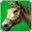 Cremello Steed(skill)-icon.png