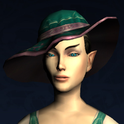 Wide-brimmed Spring Hat