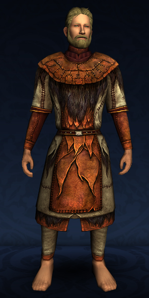 Patched Hauberk