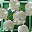 Fair Lily-of-the-Valley Crop-icon.png