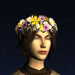 Circlet of Fresh-picked Flowers