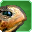 Turtle-speech-icon.png