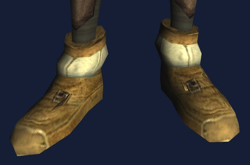 Iron Guard's Shoes.jpg