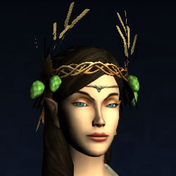 Harvest-Brew Circlet
