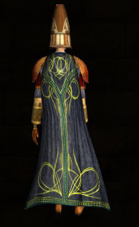 Ceremonial Scholar's Cloak