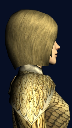 Item:Autumn Leafmail Shoulders - Lotro-Wiki com