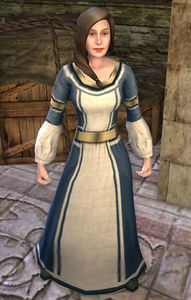 Image of Dol Amroth Quartermaster (Housing Decorations)