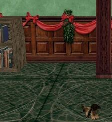 Stoor Boots Size Reference.jpg