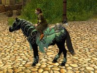 Image of Steed of Rivendell (Pony)