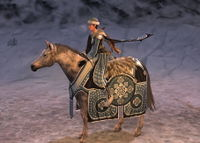 Image of Wintertide Horse