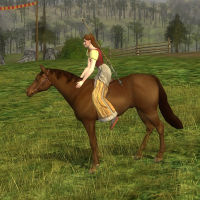 Image of Chestnut Horse