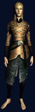 Superior Heavy Hauberk of the Towers.jpg