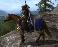 Image of Steed of Elessar's Host Horse