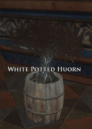 White Potted Huorn.jpg