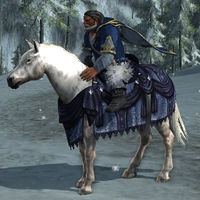 Image of Steed of Winter Winds (Pony)