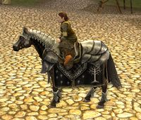 Image of Steed of the Citadel Guard (Pony)