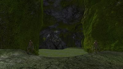 Entrance to the mossy cave system in the grove