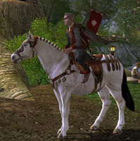 Image of Eriador Pony