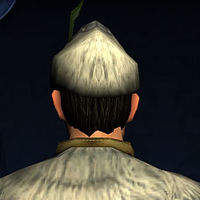 Wintry Yule Hat-back.jpg