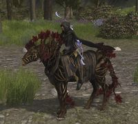 Image of Rescued Steed of Agarnaith (Skill)