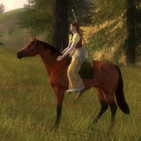 Image of Bree-horse