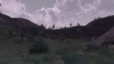 The wilds in the eastern Fields of Fornost