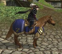 Image of Steed of Elessar's Host Pony