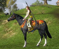 Image of Harvestmath Horse