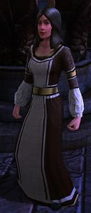 Image of Dol Amroth Quartermaster (Medium Armour)