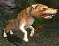 Scarred Wolf-leader - Lotro-Wiki.com