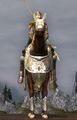 Prized Helmingas Horse Front View.jpg