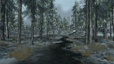 Road through the snowy woods of Taur Orthon