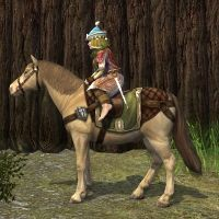 Image of Prized Theodred's Riders Pony