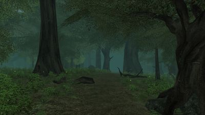 The Old Forest.jpg