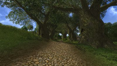 Canopied road in Tookland