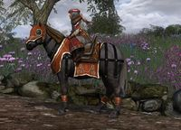 Image of Steed_of_Rhûn(Pony)