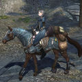 Horse of the Rune-keeper.jpg