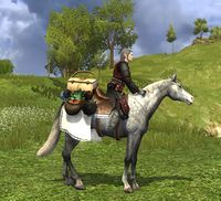 Image of Perfect Picnic Steed