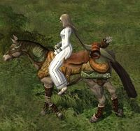 Image of Steed of the Hunter