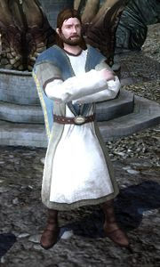 Image of Master of Battle Lore (Pelennor Sage's Gear Rewards Vendor)
