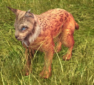 Lynx-speech (Mountain Lynx) - Lotro-