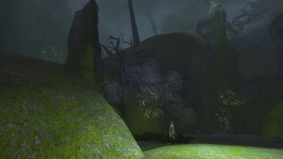 The dark pit at the bottom of the grove's cave
