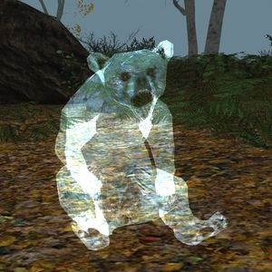 Spirit Bear Cub appearance.jpg