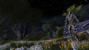 Eaves of Fangorn-2.jpg