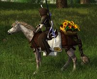 Image of Sunflower Steed