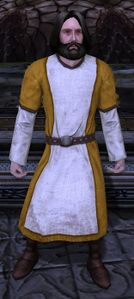 Image of Dol Amroth Quartermaster (Beorning Armour)